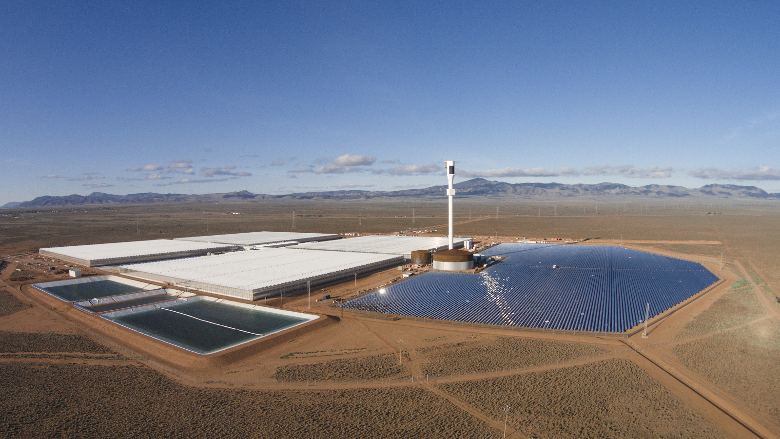 Sundrop Farms' greenhouse facility in South Australia. Solar energy generated on site is used to power the facility, and a thermal desalination plant converts seawater from the nearby Spencer Gulf into freshwater for crops. The facility is expected to produce at least  15,000 tonnes of truss tomatoes  a year. | Source:  AgFunder