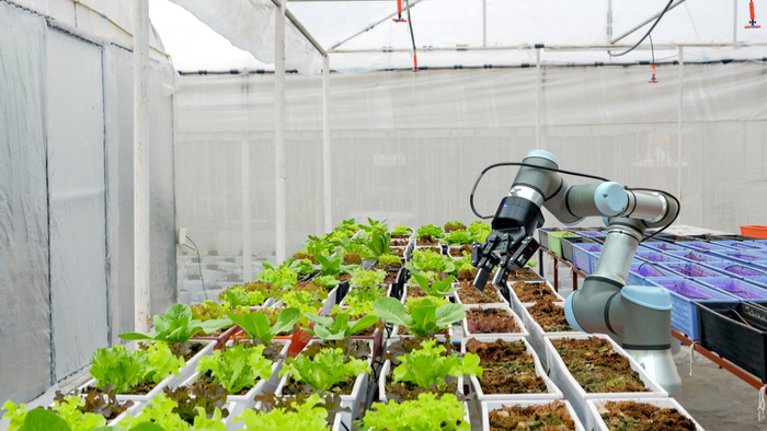 What-Artificial-Intelligence-Can-Do-for-Smallholder-Farmers.jpg