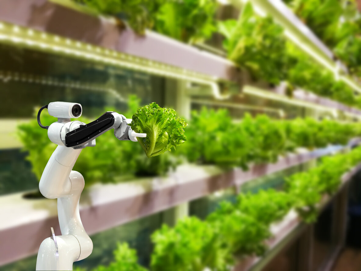 Smart-robotic-farmers-in-agriculture-futuristic-robot-automation-to-vegetable-farm-1082376566_1185x889.jpg