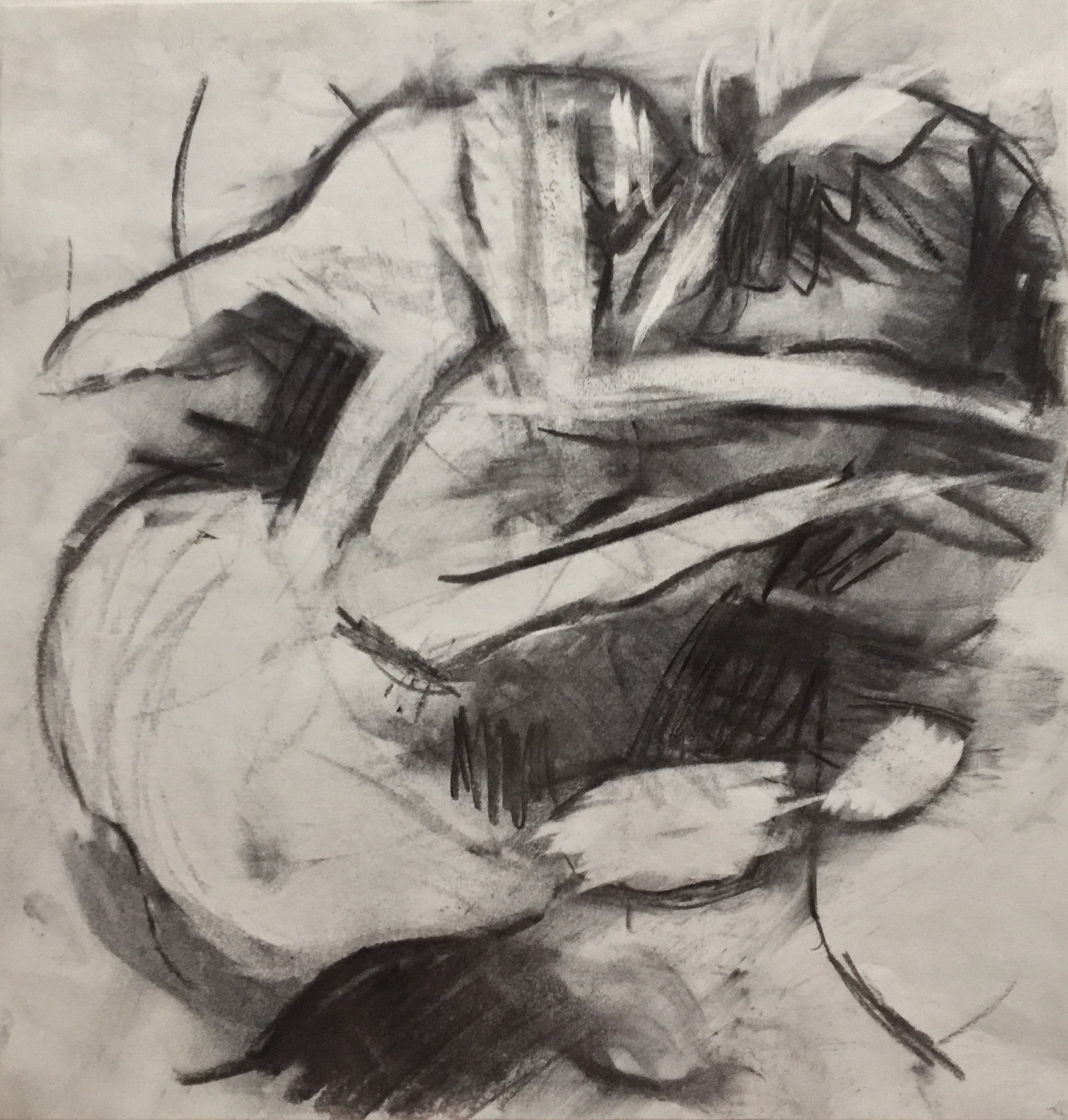 Untitled 3, charcoal on paper, Kristin Barton, .jpg