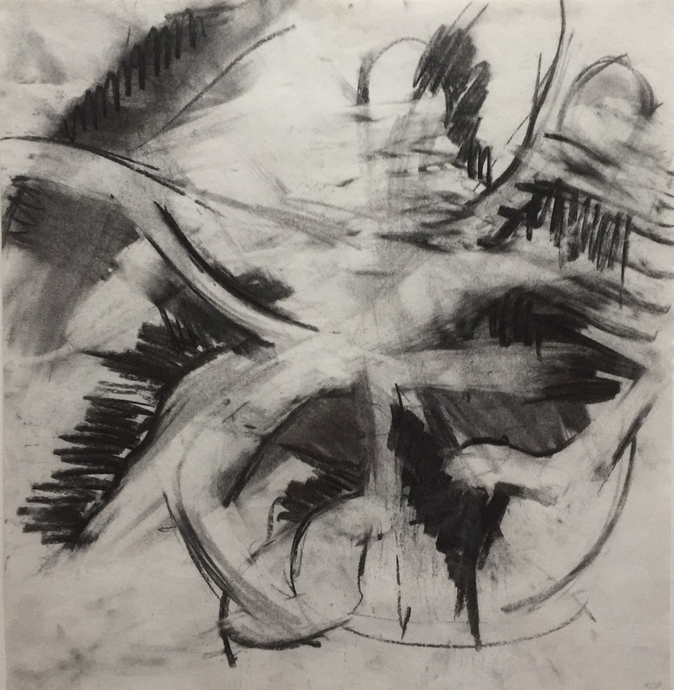 Untitled 1, charocal on paper, Kristin Barton, .jpg