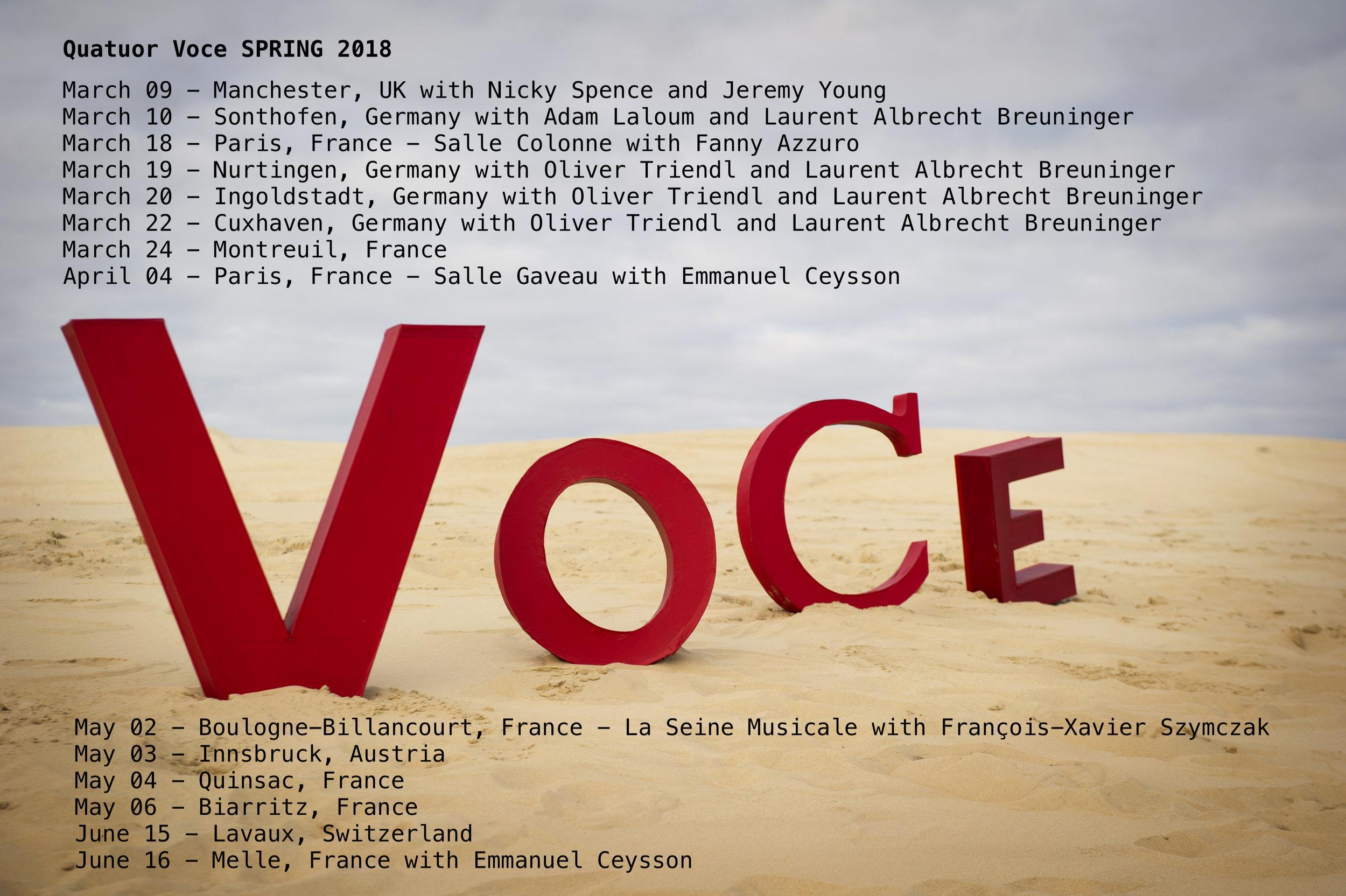 Voce Spring Tour V2.jpg