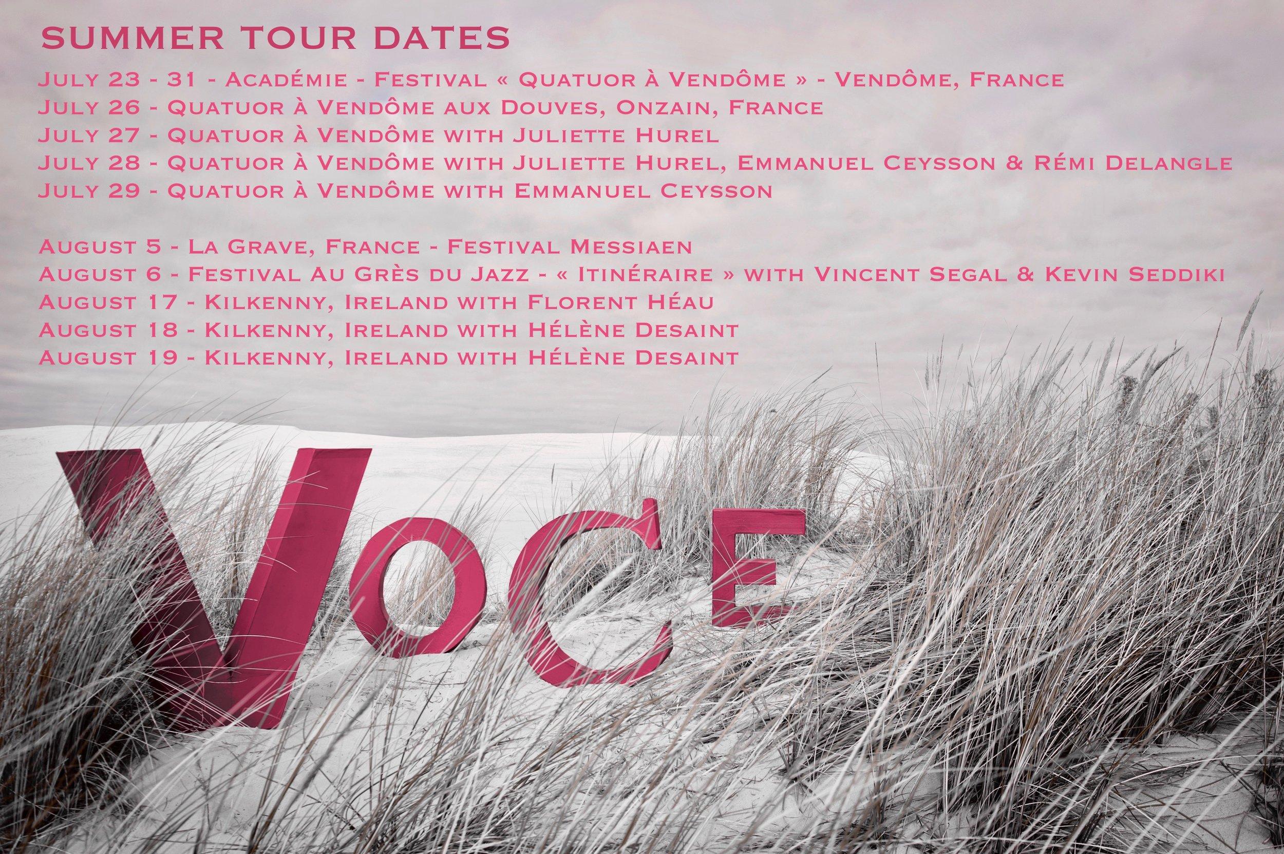 Voce Summer Tour 2018.jpg