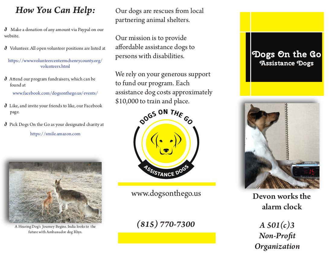 Dogs on the Go brochure-page1.jpg
