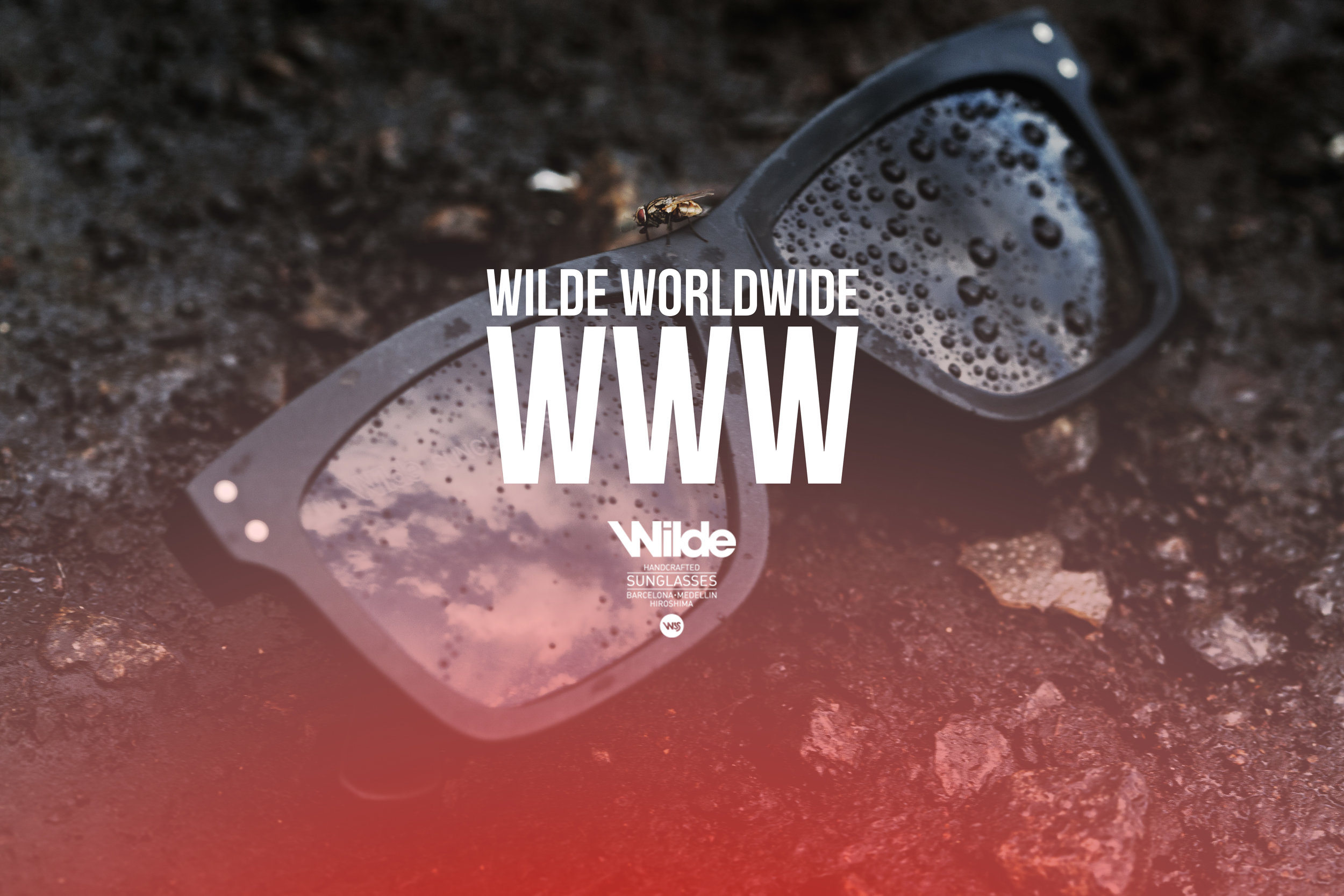 WILDE SUNGLASSES: WILD WORLD WIDE