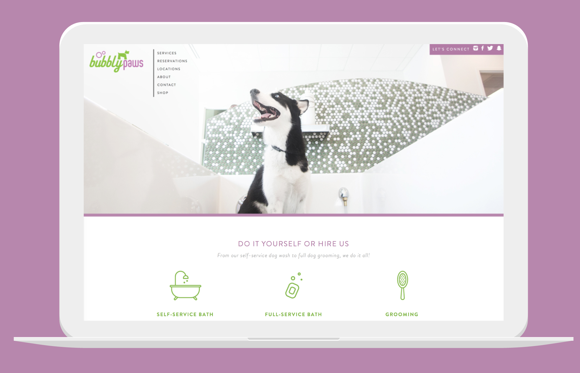 Bubbly Paws - Website Design by Kayd Roy