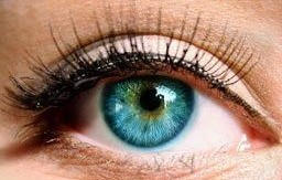 Blue and green eyes are recessive traits. -