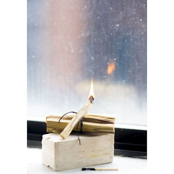 149e00d73c14cfe9461006ba6ccbf741--incense-sticks-palo-santo-tree.jpg