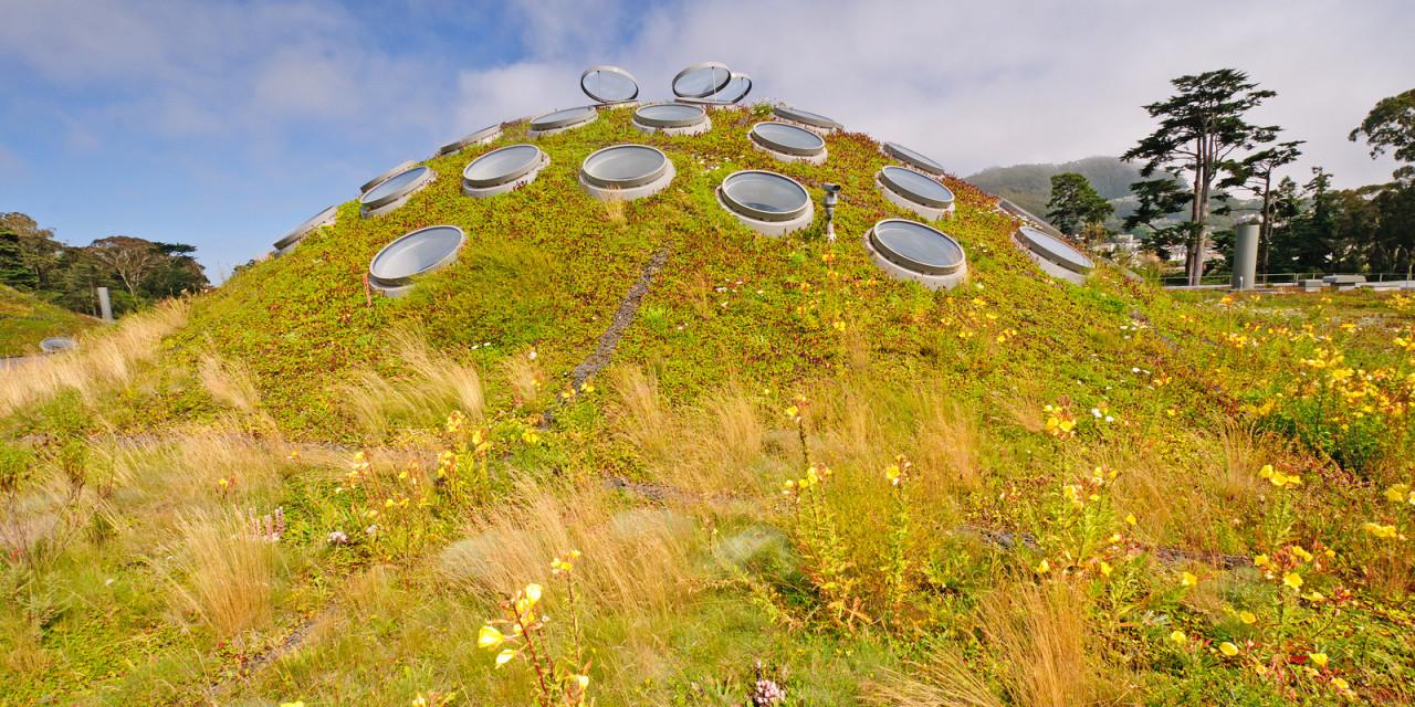 Green-Roof-1280x640.jpg