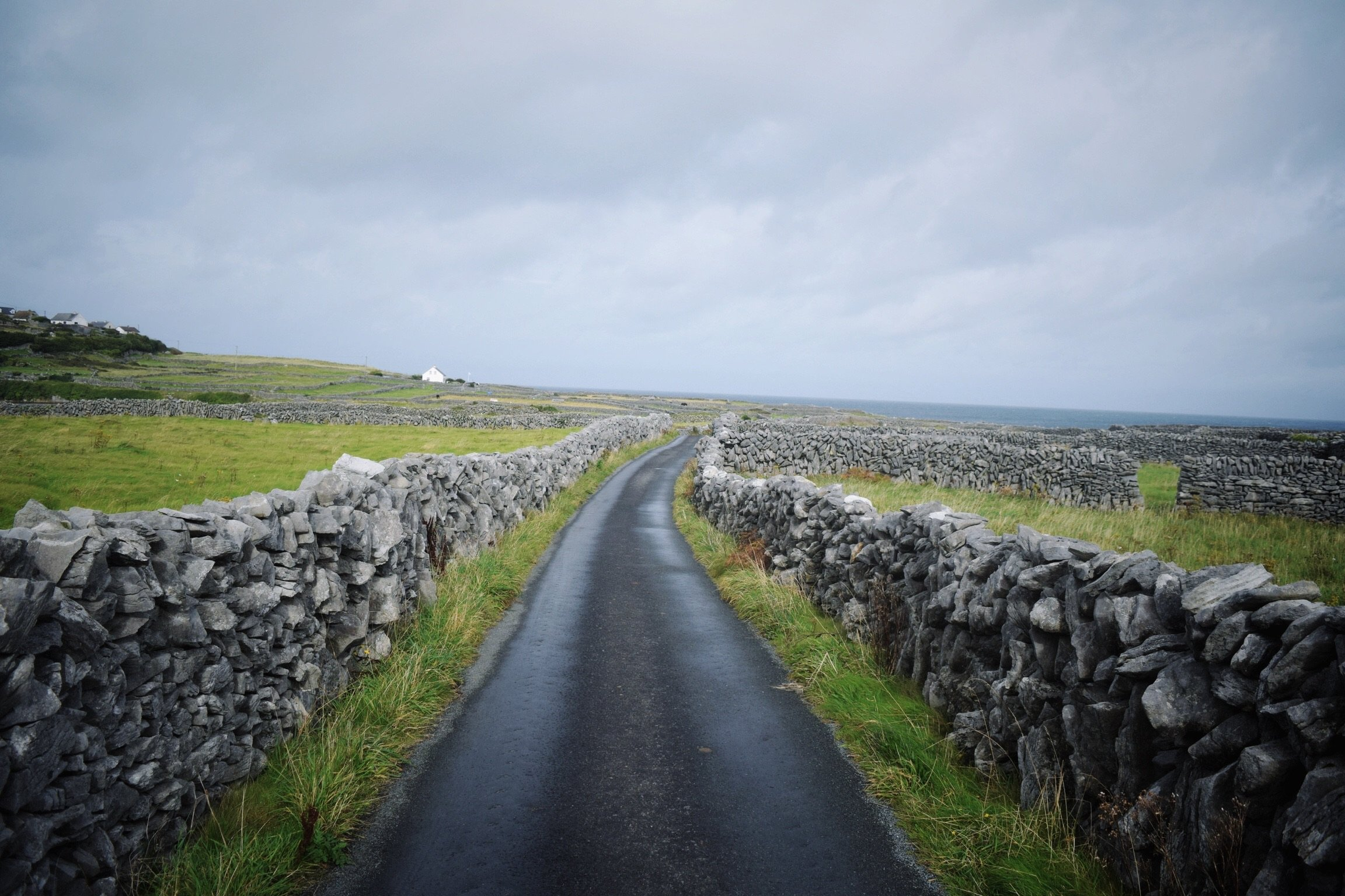 98% of the roads we travelled on outside of Dublin looked like this one: narrow, unmarked midline, and bordered by stone walls. The other 2% were like this but on hills with blind curves.