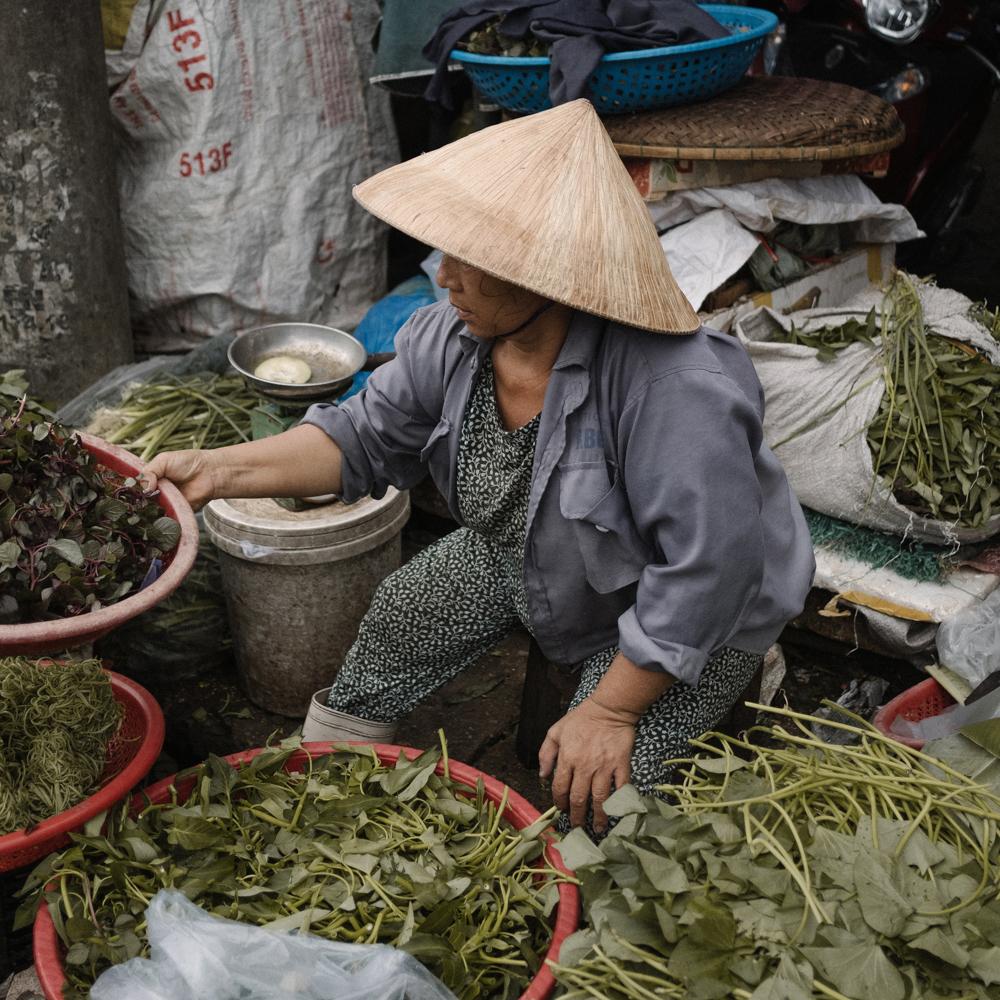 Vietnam-3-s.jpg