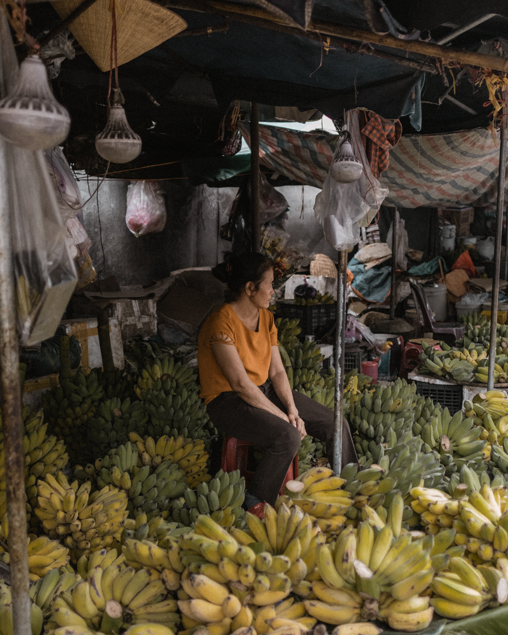 Vietnam-4-s.jpg