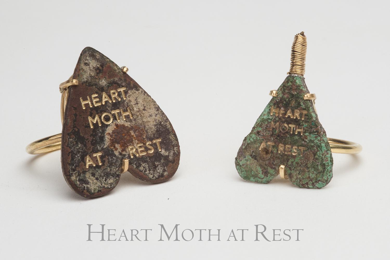 Heart+moth+at+rest.jpg