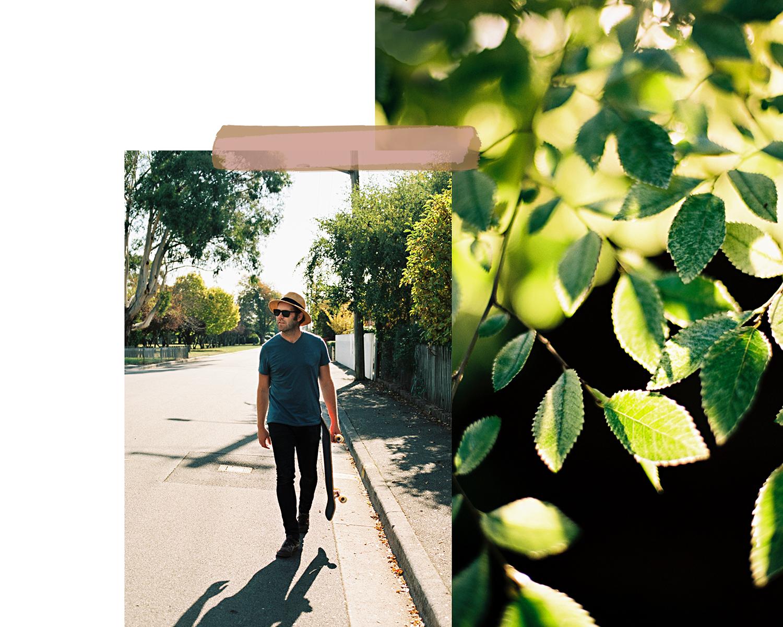 leafy2.jpg