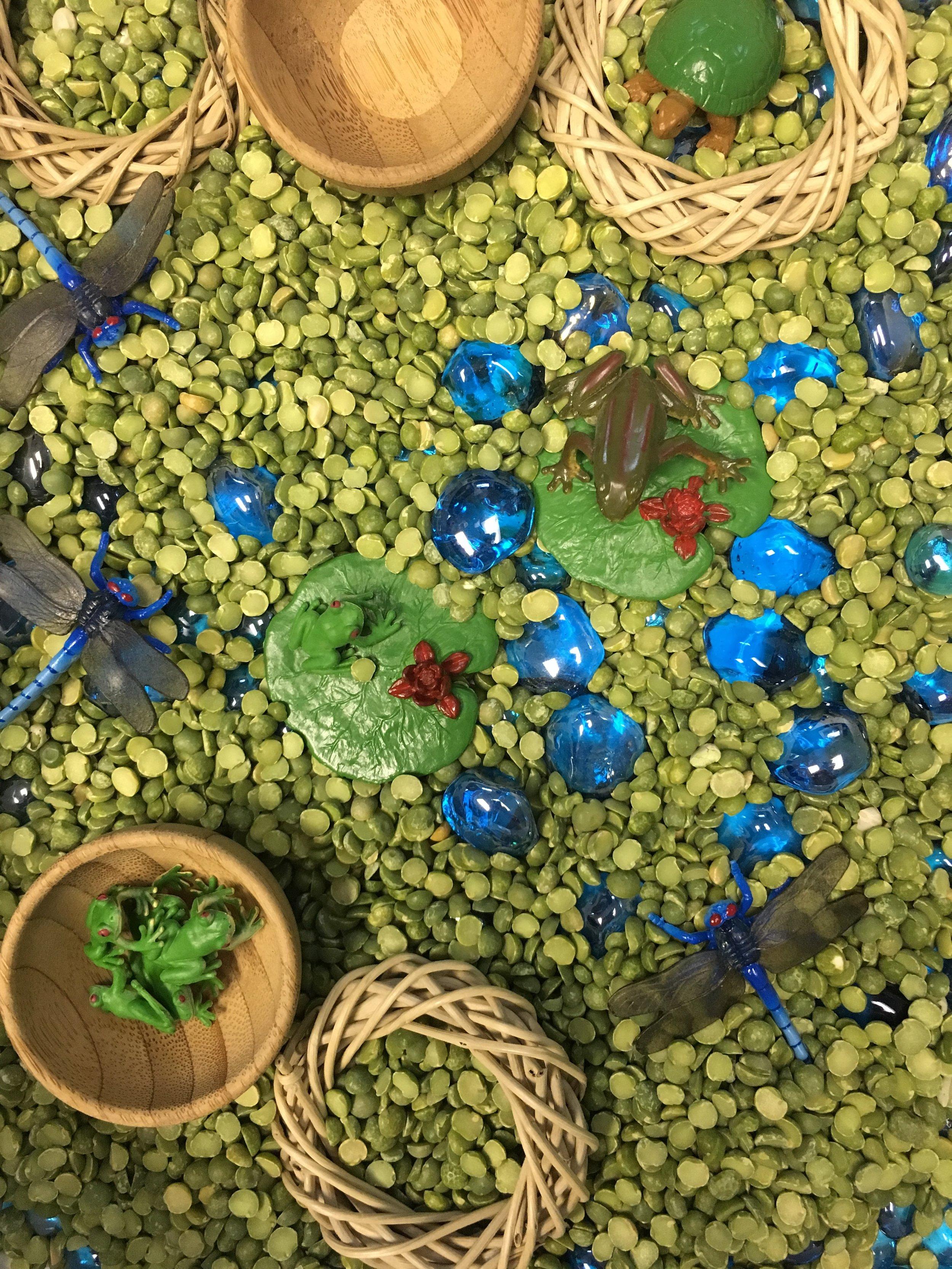 dry sensory bin lentils.jpg