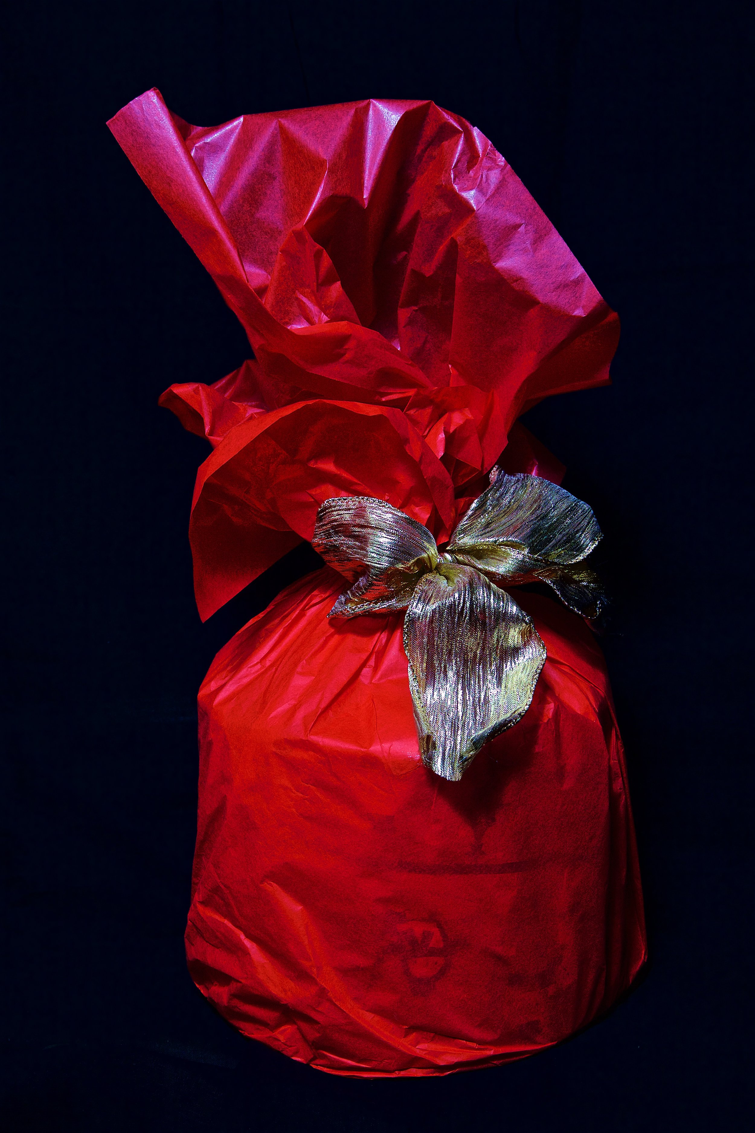 Gift wrapping photography