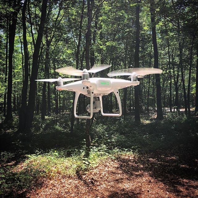 A little drone action through the woods for a real estate shoot in Worton, MD