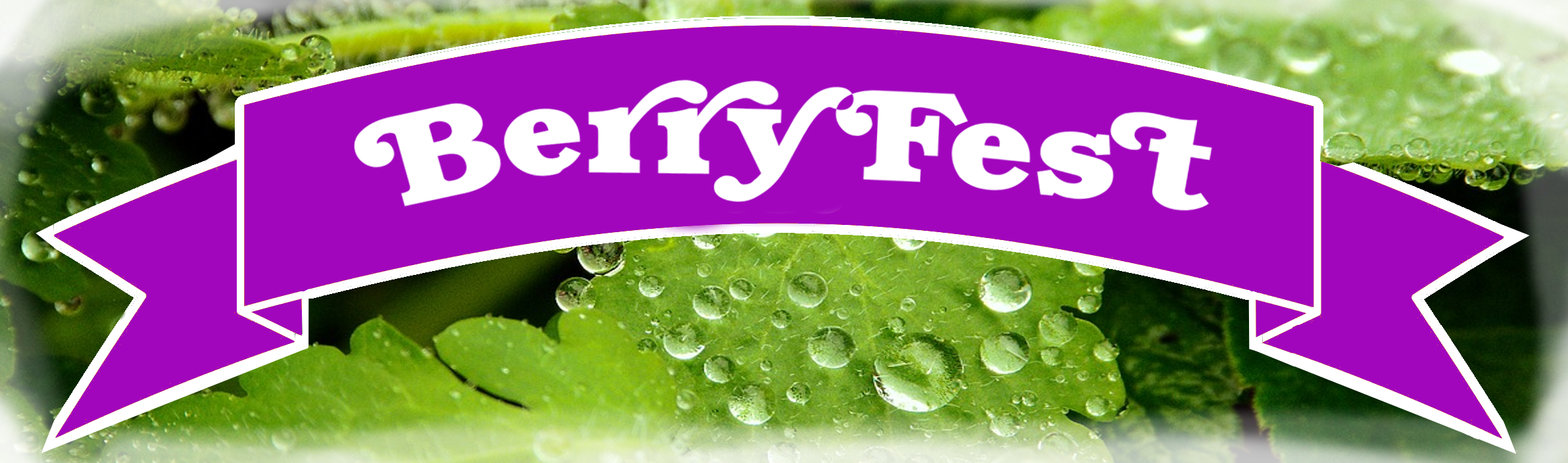 Murray Farm Fest BerryFest ribbon oN gREEN.png