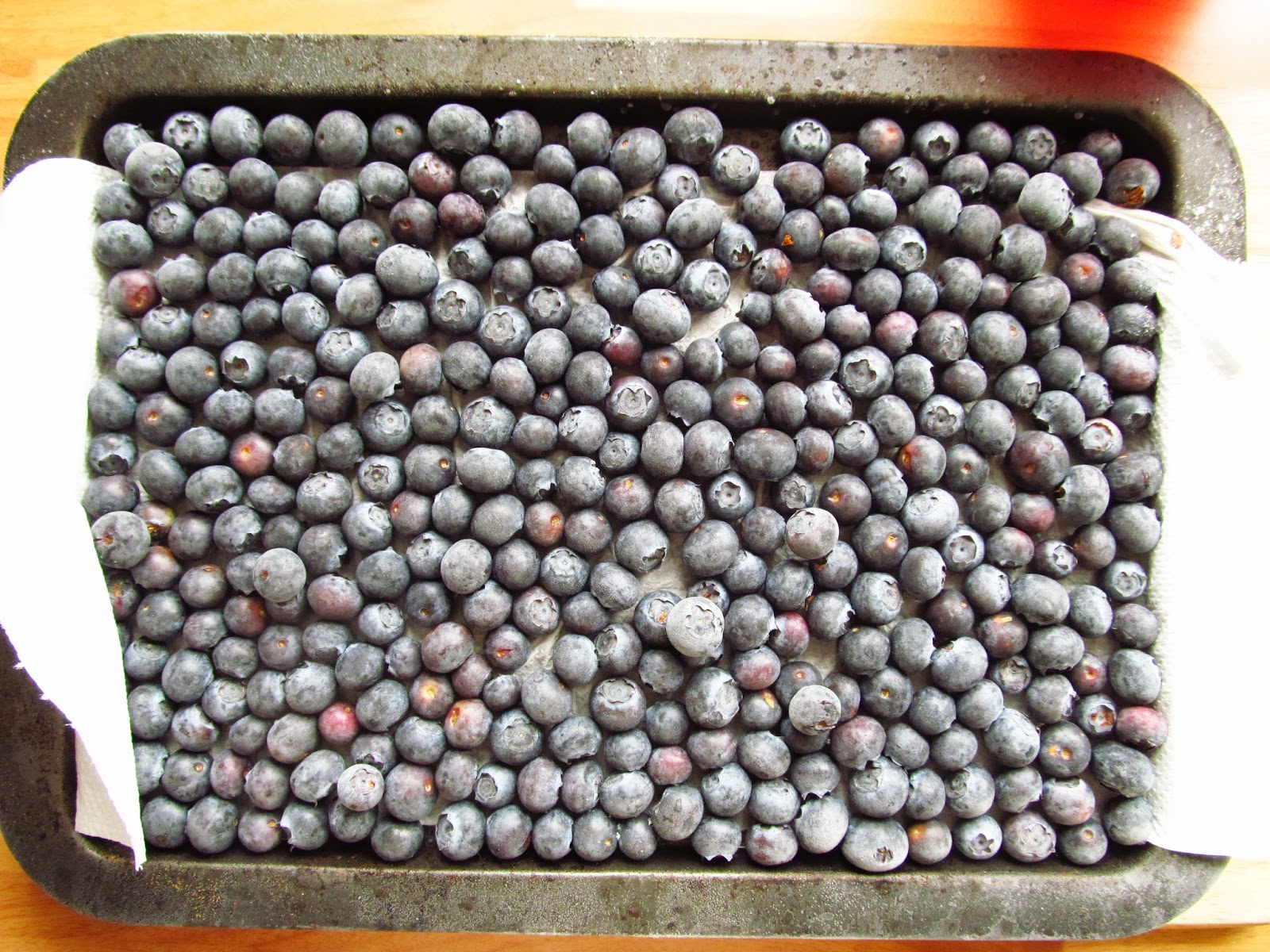 3-blueberries-on-tray-1024x1006.jpg