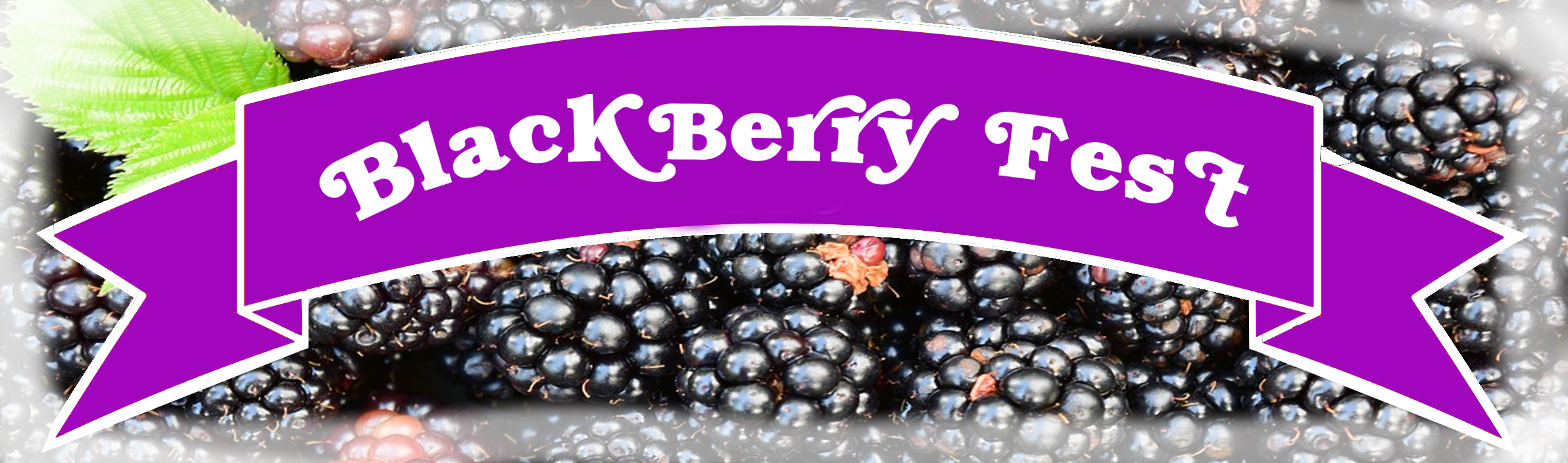 Murray Farm Fest Black BERRY FEST ribbon .png