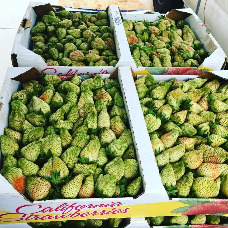 Green Produce.jpg