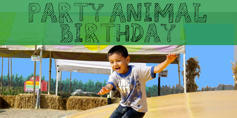 Birthday Party Animal.png