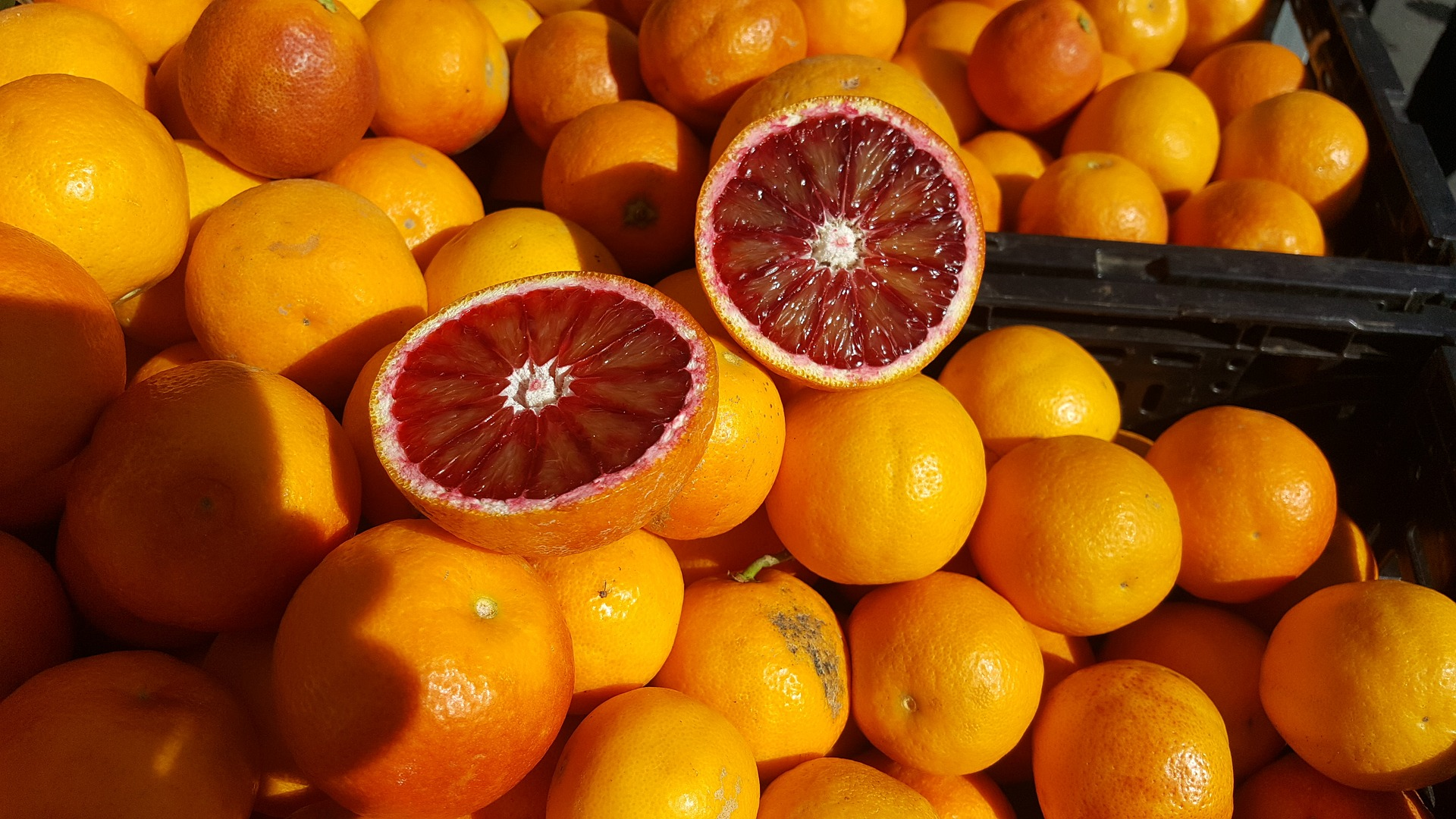 blood-orange-2051613_1920.jpg