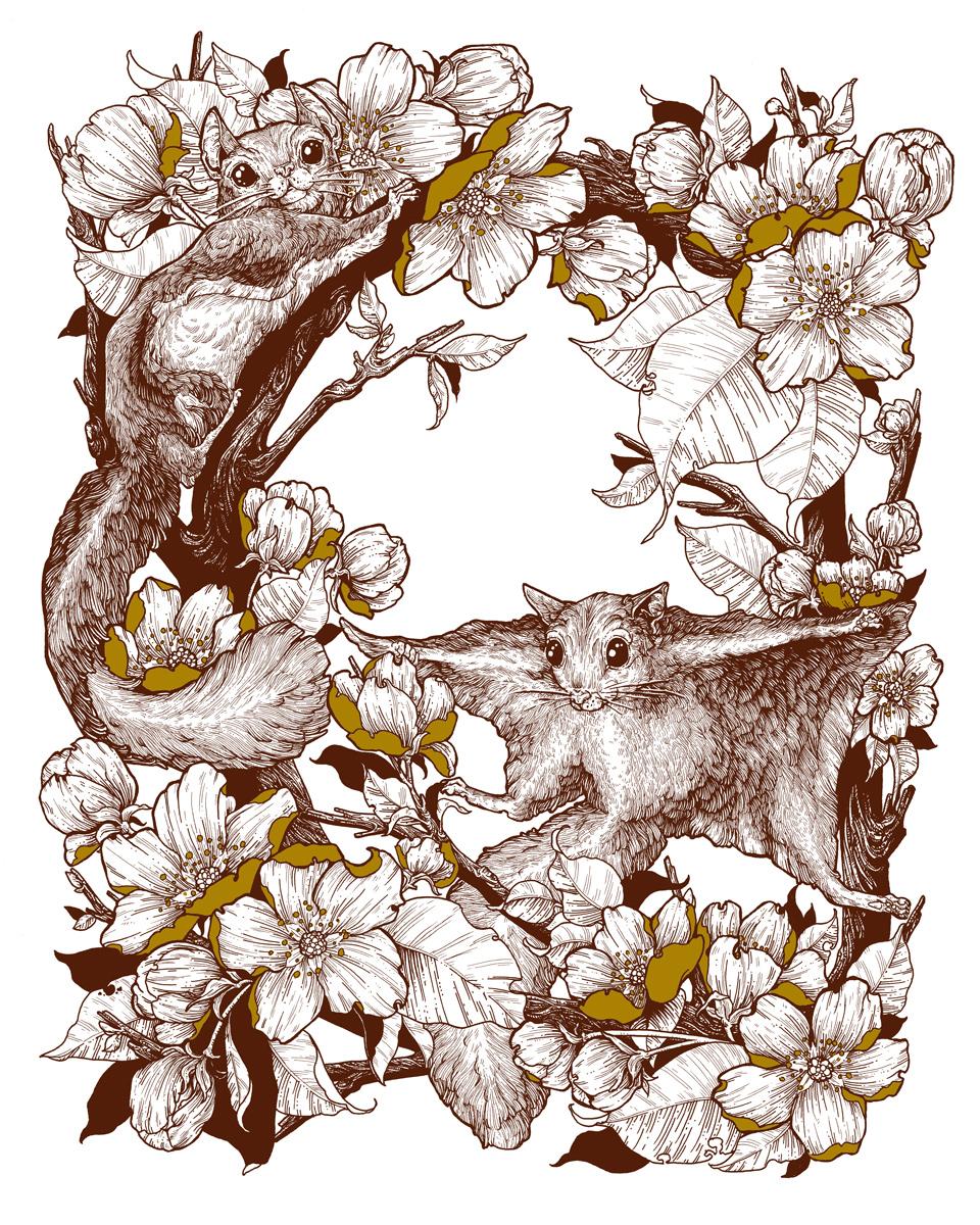 Michel-Roger-Squirrels-Erica-Williams.jpg