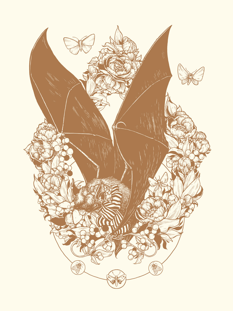 Apparition-Bat-Erica-Williams.jpg