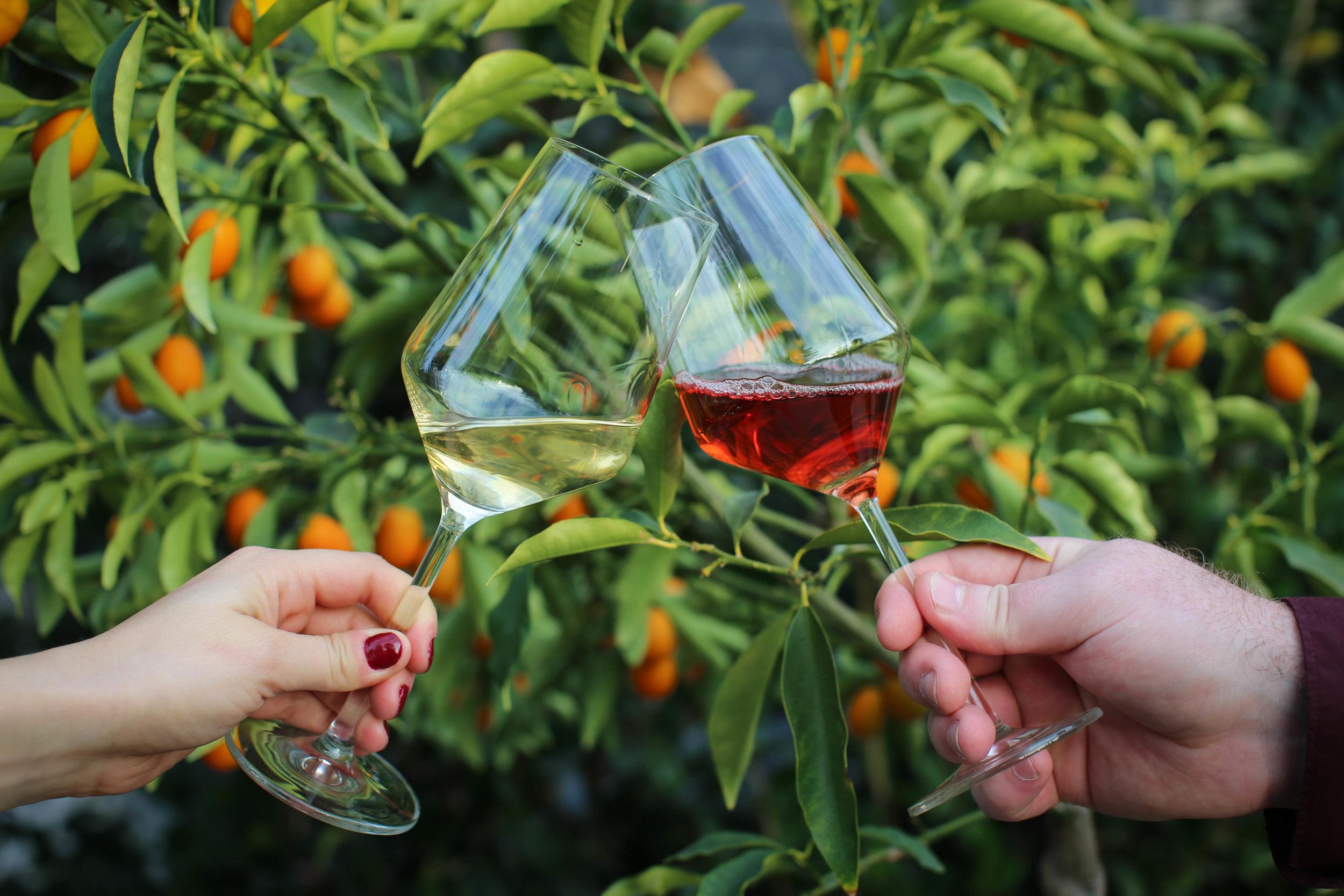 cheers-and-oranges2.JPG