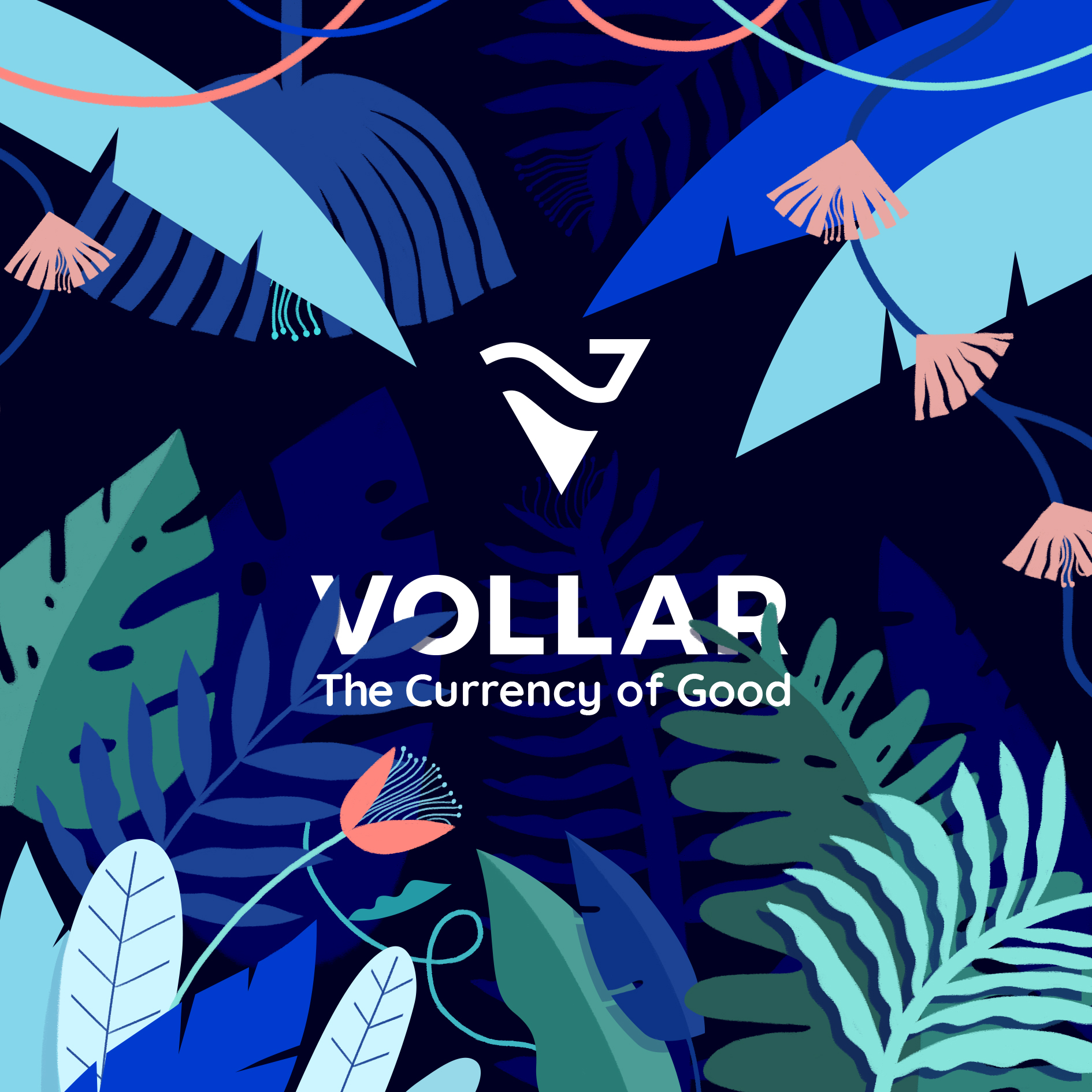 Vollar, The Currency of Good