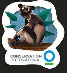 Beby the indri lemur