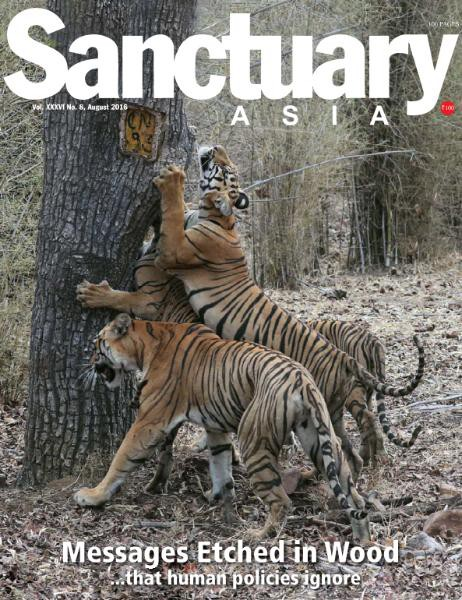 Sanctuary-Asia-August-2016-462x600-3085626.jpg