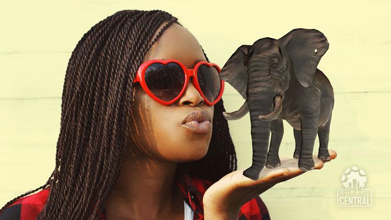 SafariCentral_ar_animalheroes_elephant_S.jpg