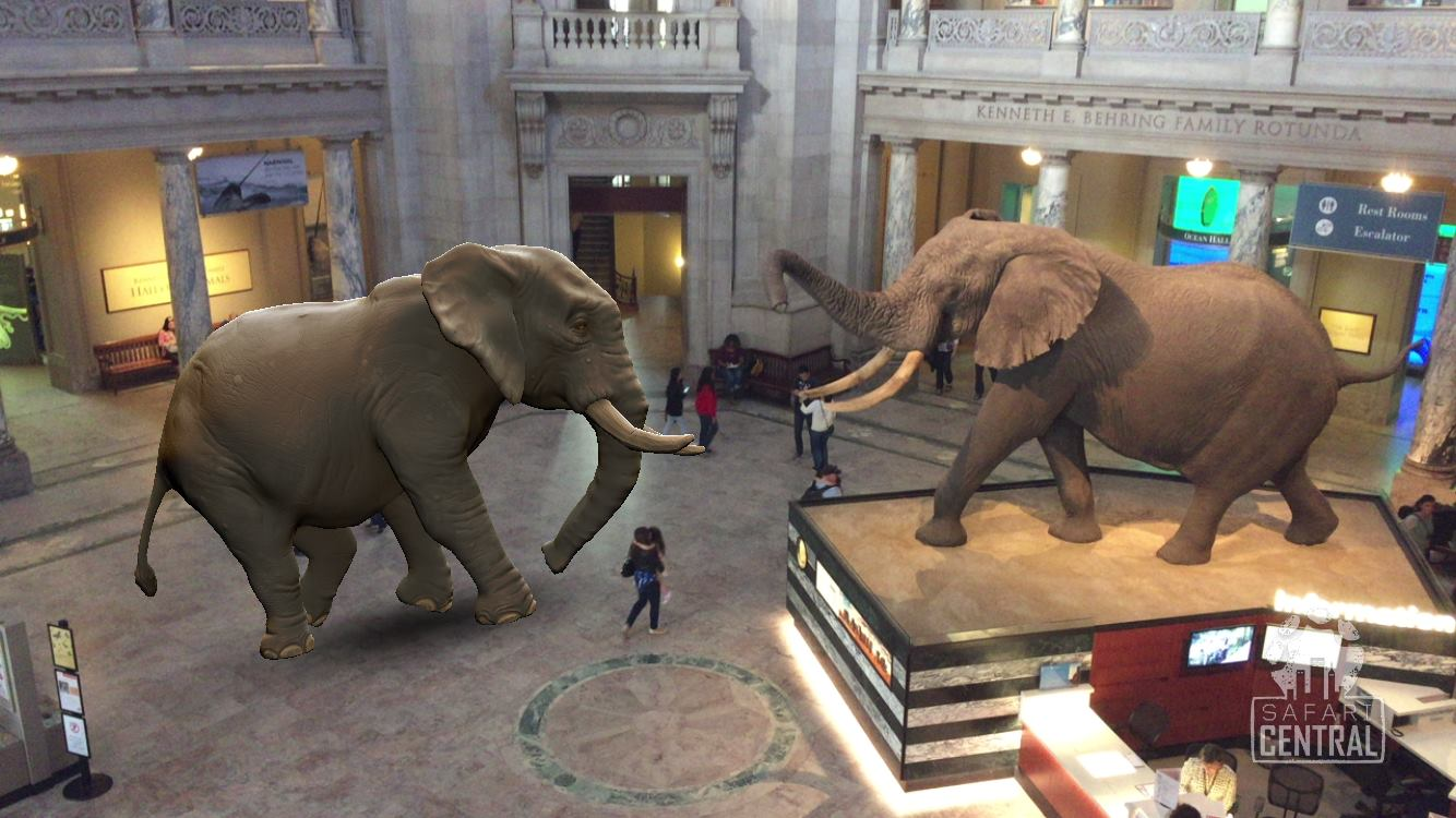 The winner of the Augmented Reality Wildlife Photography Award 2017 is Richard Gudz, with his photo of Mweturia the Elephant at the Smithsonian Museum in Washington D.C.