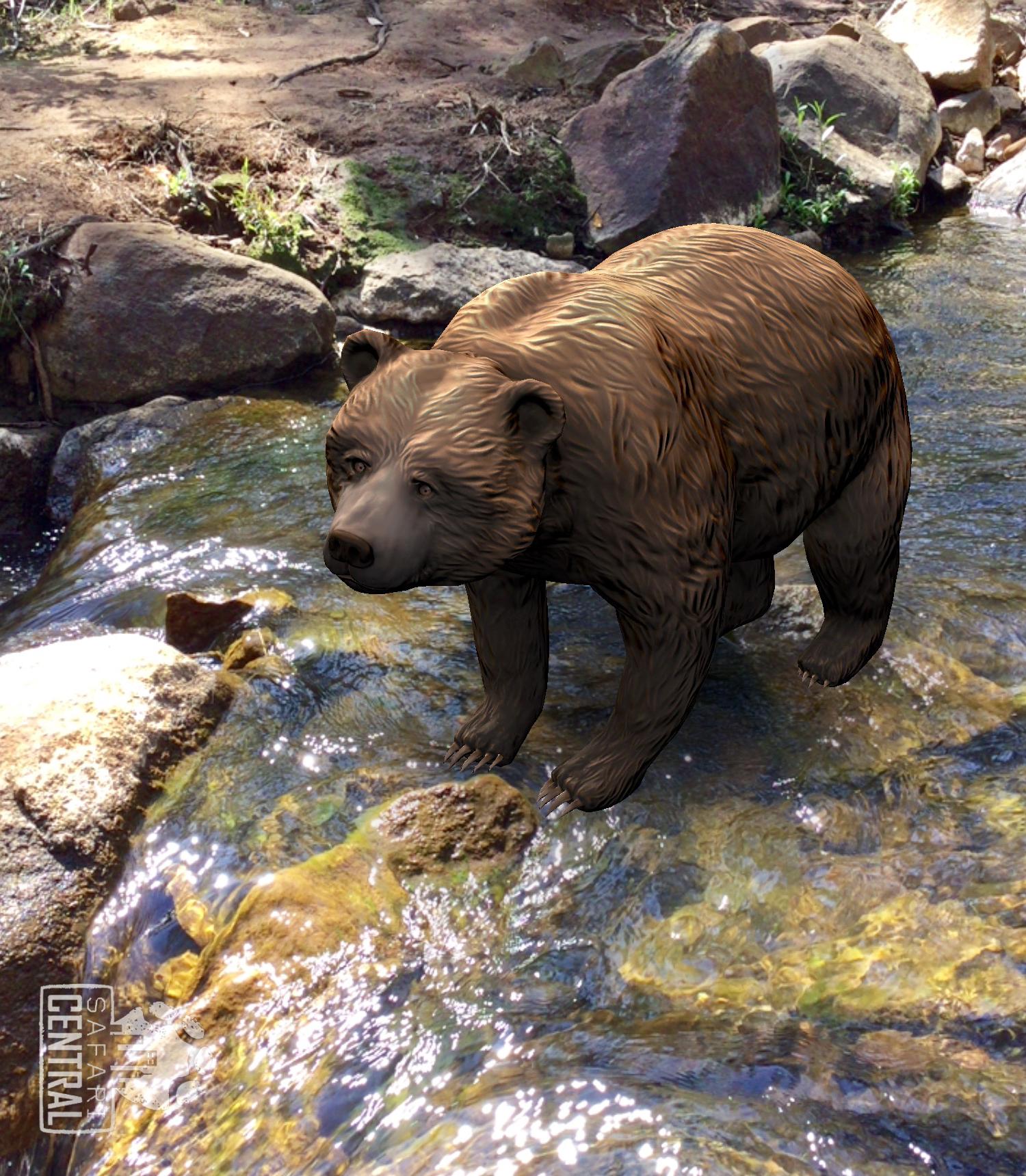 conservation_games