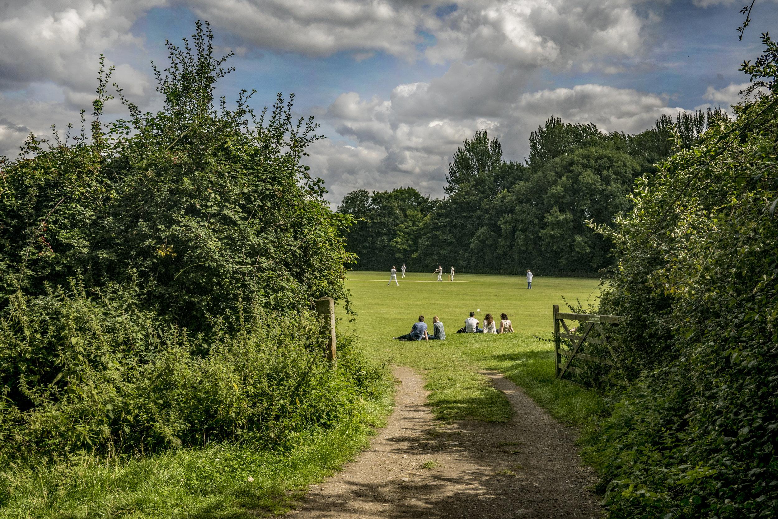 cricketgrantchester.jpg