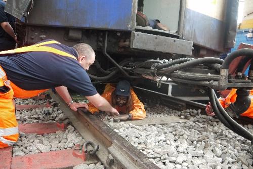 Train Crawl Dorcas 500.jpg