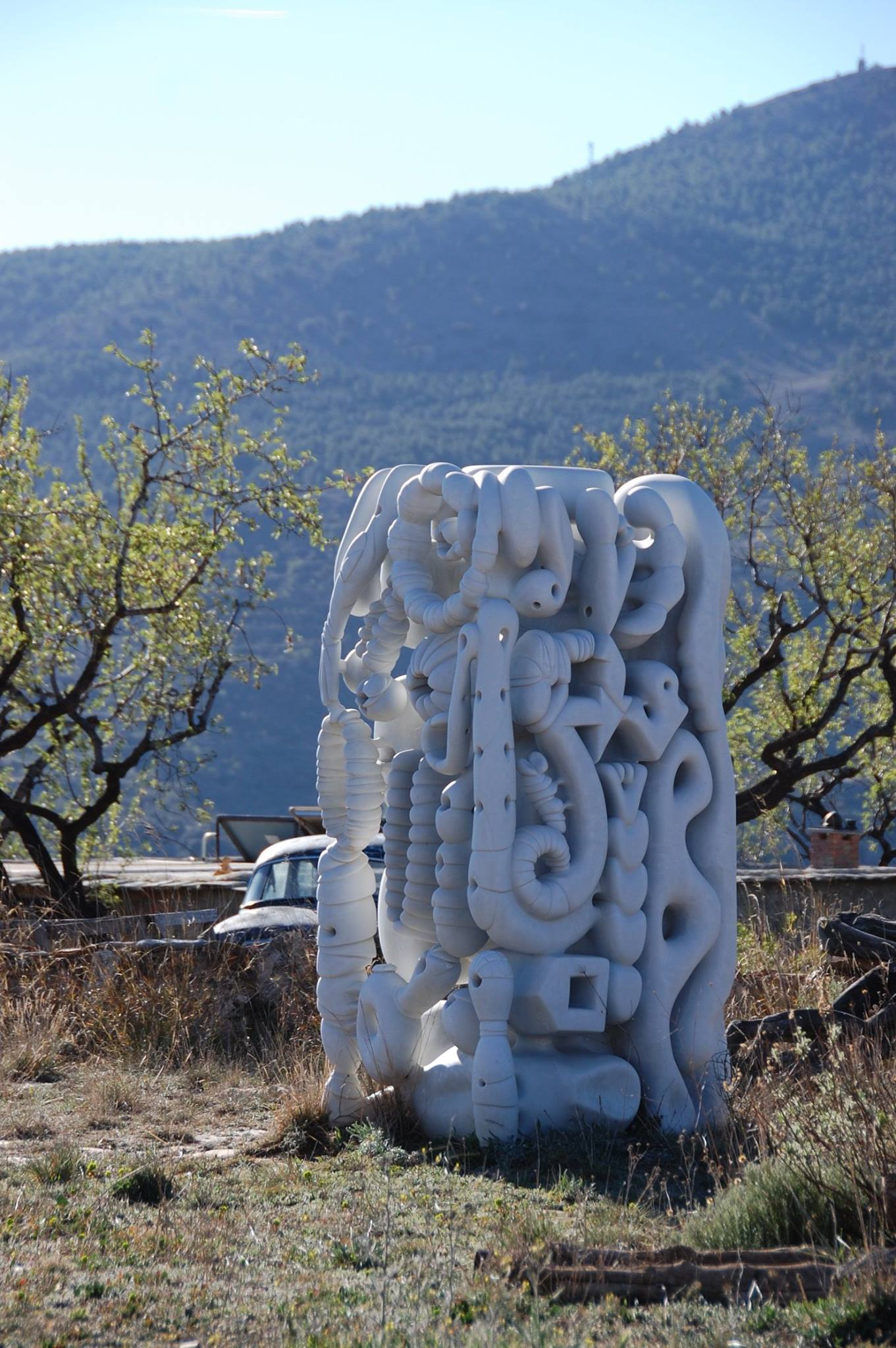 Sculpture, 110 W x 220 H x 100 cm