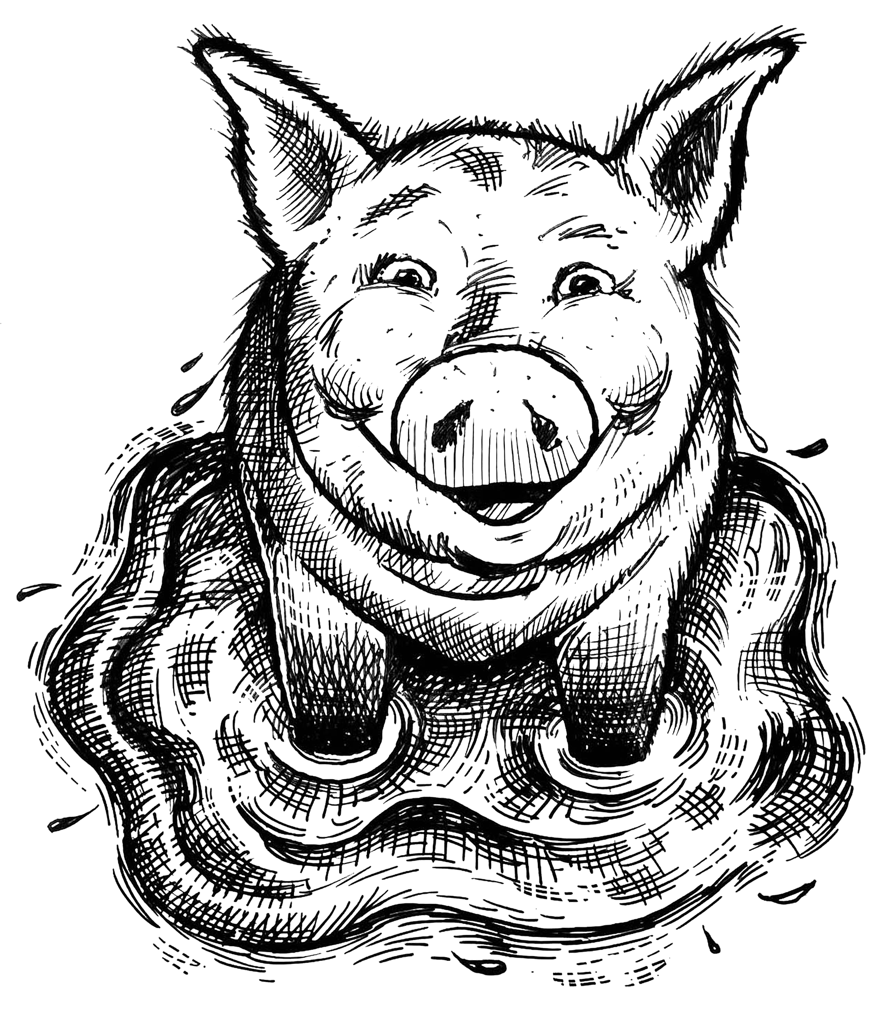 saxbys-pig-in-puddle.png