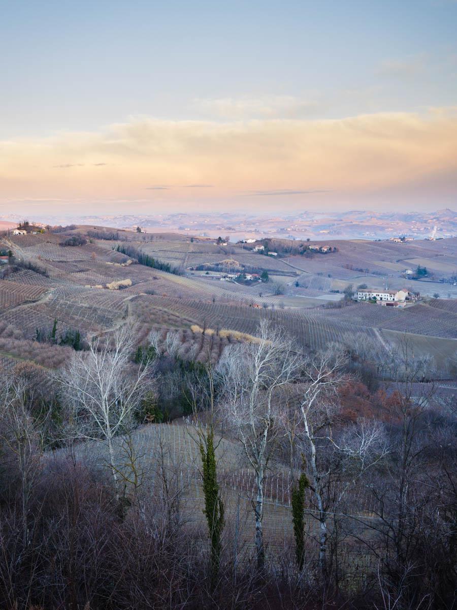 Piedmont and Wine  - Fujifilm GFX Challenge -