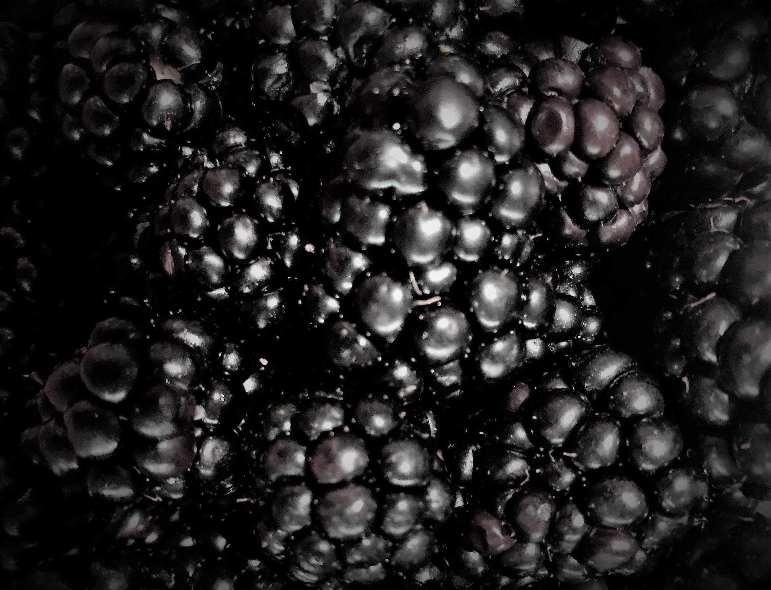 Always Fresh Blackberries