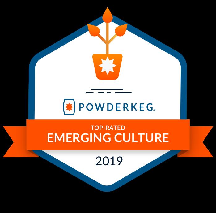 Award-Emerging-Culture@1x.png