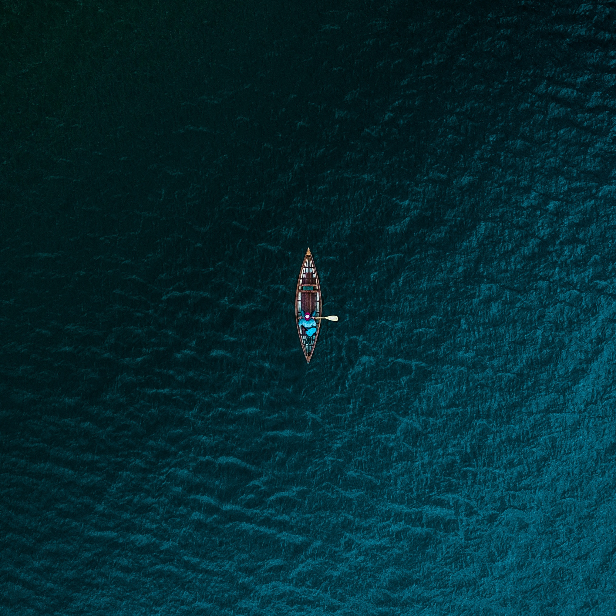 Photo by  Andrew Draper  on  Unsplash