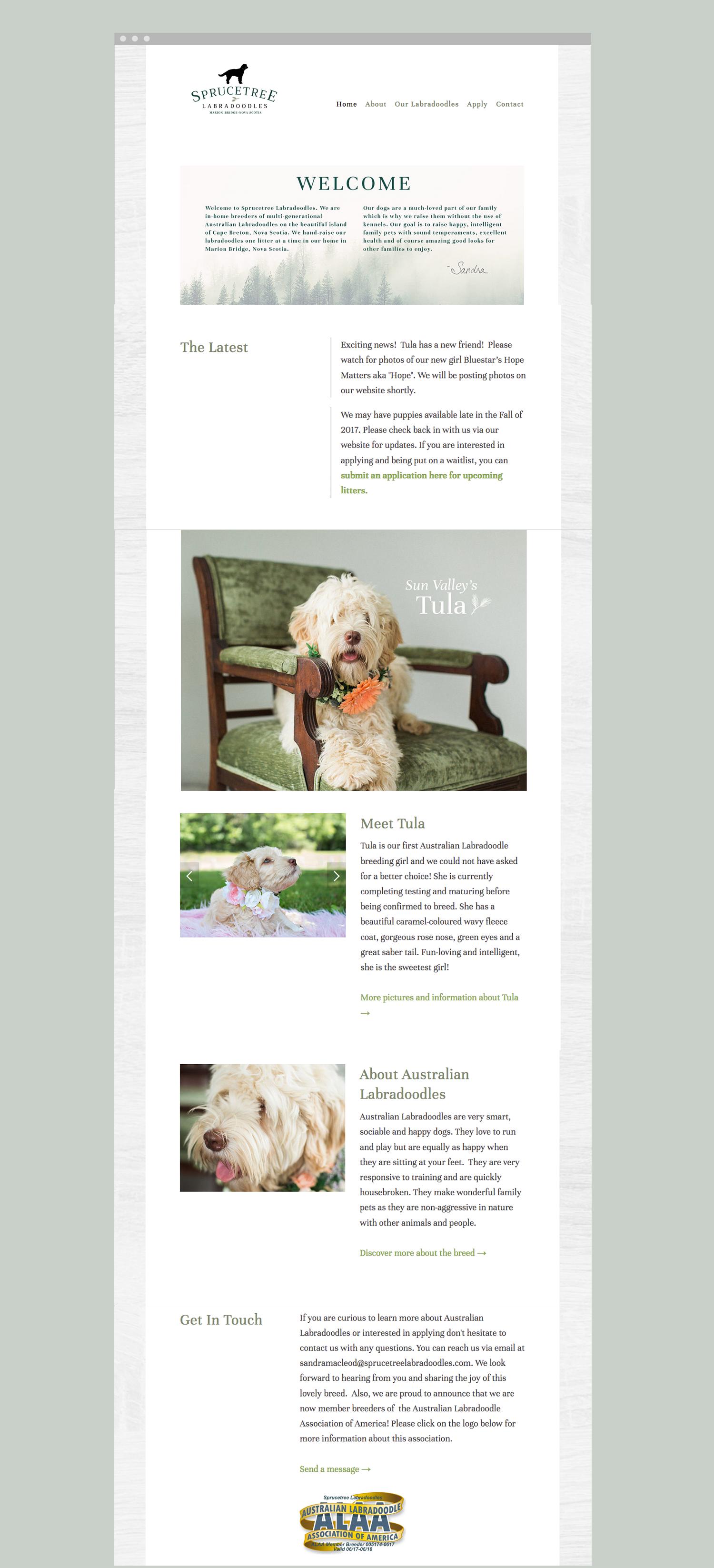 website-design-novascotia