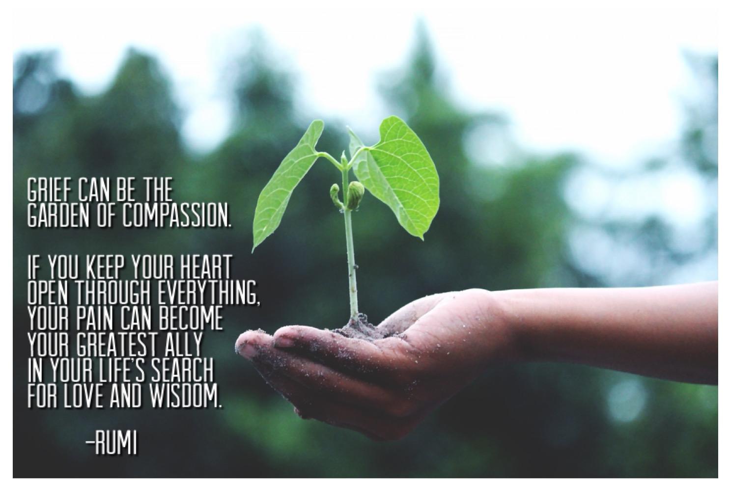 plant quote.JPG