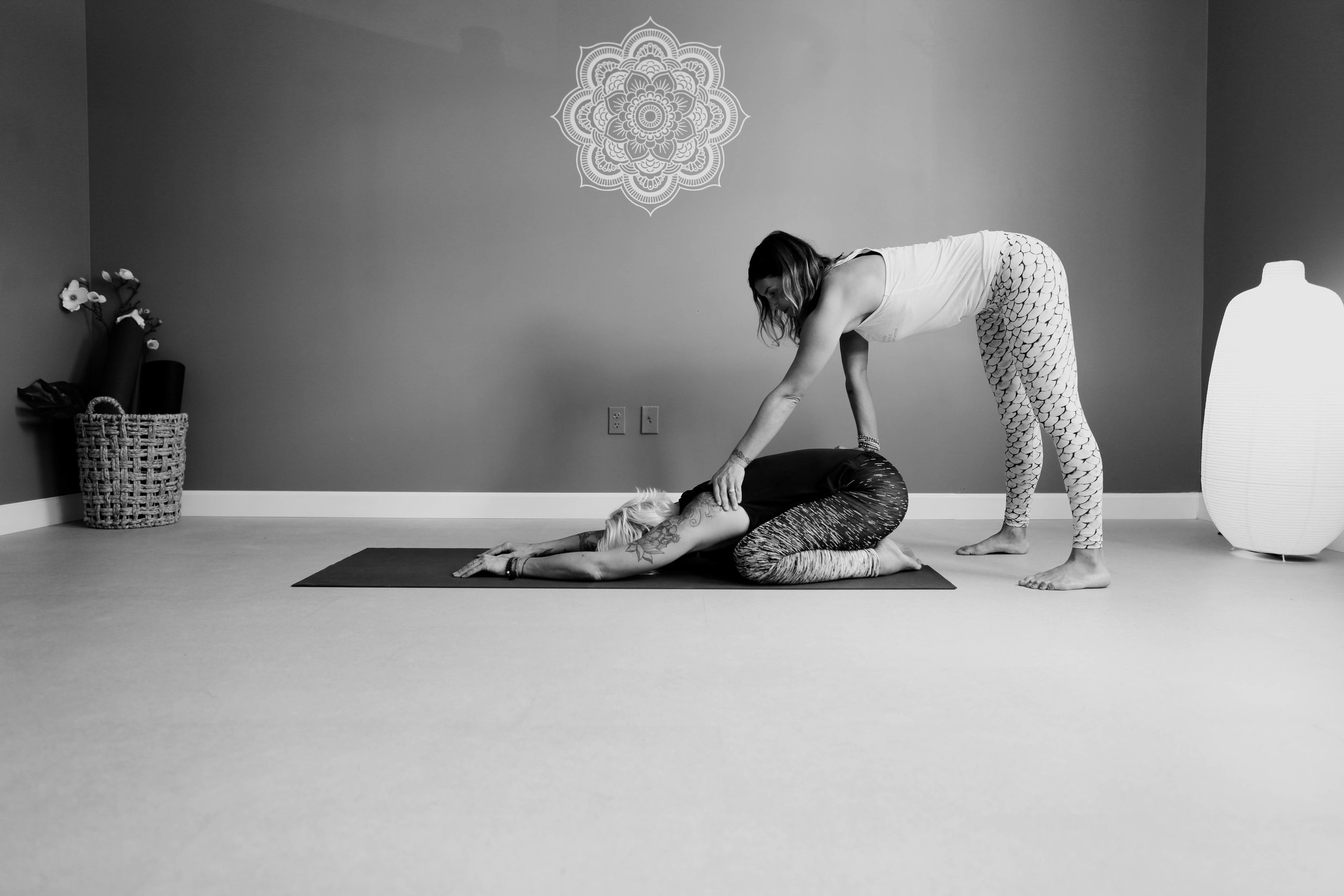 "Moksha Yoga Studio 200 Hour Teacher Training Program - with founder, Cora Rosen and MYS FacultySep 3rd-6th, 9-13th, 16th-18th, Sep 30th-Oct 4th, 7th-11th • Monday-Friday from 9-2pm each dayStudy in the practice of yoga, and it's teachings... Our extensive 200 hour Yoga teacher training and comprehensive studies program includes Vinyasa Yoga and Patanjali's Yoga Sutras, combined for a thorough and practical understanding of Yoga and it's teachings. With the Sutra's we will explore the outer level of consciousness all the way into the depths of our being. Included in the Sutra's are the asanas,(yoga poses) which you will learn the classical and contemporary techniques from the best major systems such as Ashtanga, Iyengar, modern techniques such as yoga conditioning, restorative practices and more. These studies will assist you in cultivating a deeper understanding and connection to your personal practice as well as build confidence and gaining the preparation needed to be a well-rounded teacher.MYS's Teacher Training course will concentrate on Vinyasa yoga sequencing thru the classical foundations, teaching a yoga class effectively & safely, understanding the student and creating your own style of teaching. Techniques that will be used to accomplish this are a study of the body, anatomy and movement, pranayama and the science of breathing, how we use the breath to cultivate energy while quieting the heart mind relationship. Safe assisting instruction, either physical or verbal descriptions will be reviewed as well as the importance of props and modifications to be able to assist others safely through their practice. An introduction to Kundalini, the nadis, Sushumna nadis and the relationship to the chakras as well as learning the 3 doshas, and understanding how to cultivate this into your daily life. We will discuss teaching philosophy, ethics, proper sequencing, marketing and building your foundation as a teacher. All of this will take your Yoga and your self to the next level. By the end of the course, upon completion you will not only receive your 200 Teacher Certification approved by Yoga Alliance but a wealth of information, wisdom and insight to continue on your yogic journey with.Through this program you will:* Empower yourself and others* Refine and deepen your own yoga practice and knowledge* Deepen your understanding of asanas, technique, alignment, modifications and benefits* Learn how to design effective classes and the importance of sequencing* Develop well-rounded knowledge of yoga philosophy and lifestyle practices* Gain experience through practice teaching* Learn the business of Yoga* Connect with others who are participating in this program* With the completion of this course you will receive your Yoga Alliance 200 hr Teaching Certificate Pre-CourseRequirements:* Must be a yoga practitioner for minimum of 1 year with a consistent practice.*Complete Teacher Training Application and submit along with $150 application fee: Email cora@mokshayogastudio.com for application.* Recommended reading and reference books:""Light on Yoga"", B.K.S Iyengar; Schocken Books, New York""The Tree of Yoga"" , B.K.S. Iyengar; Shambala Books, Boston""The Language of Yoga"", Nicolai Bachman; Sounds True, Boulder CO""Anatomy of Hatha Yoga"", A Manual for Students, Teachers, and Practitioners, H. David Coulter; Body and Breath, Honesdale, PA"" The Yoga of The Yogi"", The Legacy of T Krishnamacharya, Kausthub Desikachar; Krishnamacharya Yoga Mandiram, Chennai, India ""Ashtanga Yoga"", The Practice Manual, David Swenson; Ashtanga Yoga Productions, Houston, Texas What'sIncluded:*Moksha Yoga Studio's Comprehensive Teacher Training Manual*Unlimited Yoga at Moksha Yoga Studio to satisfy course requirements*1 Workshop at Moksha Yoga StudioCourse Requirements:* Attendance of full course, absence or tardiness will have to be made up during next session.* Self-practice hours: Must attend at least 2 classes a week for duration of training. (Signed sheet by instructor) * Supervised Class Observation Hours: Total of 10 classes, observation of at least three different styles taught at Moksha Yoga Studio* Supervised Class Assist/Adjustment Hours: Completed after asana and assist review in class, and approved by instructors* Completion of all assignments, papers as well as written and teaching examsFees:Payment options or as follows:* Early Bird Tuition (paid in full by August 1st): $150 Registration Fee + $2550 Tuition = $2700* Regular Tuition (paid in full up to 1 week before training): $150 Registration Fee + $2850 Tuition = $3000 * Payment Plan Tuition (paid monthly for 4 months, July-Oct): $150 Reg. Fee + $675 a month = $2850*Payment Plan Tuition 2 (paid monthly for 5 months, June-Oct): $150 Reg. Fee + $450 a month = $2850Faculty: CORA ROSEN, Founder and Director of Moksha Yoga Studio has been practicing yoga for 20+ years and teaching for over 16. Cora not only facilitates teacher trainings but also teaches group classes incorporating intelligent and invigorating sequencing, good music and calming energy but specializes in working one on one. She works with professional athletes, celebrities and the local community using yoga as a tool to help address, assess and work through physical injuries and imbalances and foster a greater sense of awareness, healing and balance in the body and mind. Cora strives to bring yoga into everyday life by doing, evolving and truly living it, allowing peace and joy to flourish within and spread to others! Other instructors from the Moksha Yoga Studio family will also be involved in teaching/assisting in this course.Click here to pay application fee or register for course! Once you pay application fee, an email with application will be sent."