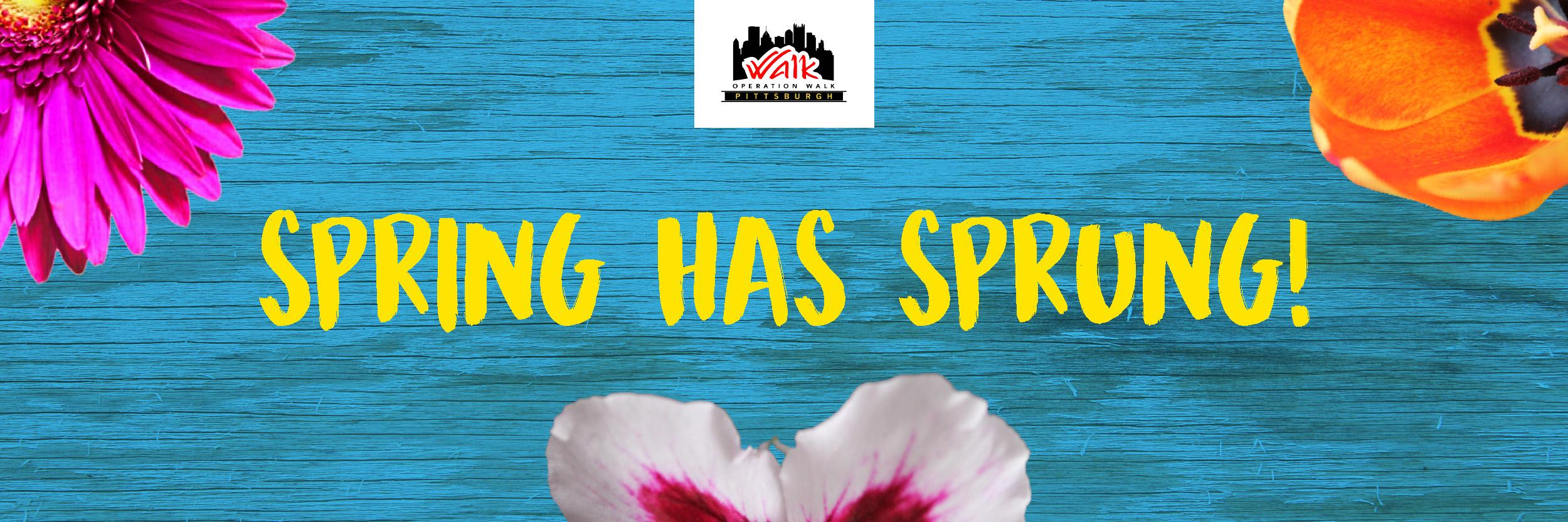 Op Walk Spring Flower Commerce Banner.jpg
