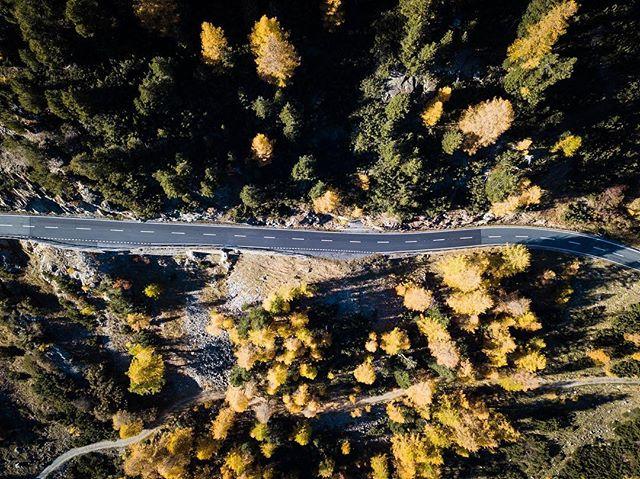 Autumn Road  #bodylpics #clickalps #natura_love_ #top_world_shot #lwt_destinations #igs_europe  #ig_great_pics  #euro_shots #world_great @world_great #igworldclub_landscape #love_bookfactory #myplanet_nature #diewocheaufinstagram #bergpic @bergwelten #switzerland  #visitswitzerland #InLoveWithSwitzerland  #switzerland_vacations  #super_switzerland  #myswisspic #total_switzerland #loves_united_switzerland  #switzerlandmylove  #switzerland_destinations  #blickheimat  #graubünden #grhome #ig_graubünden