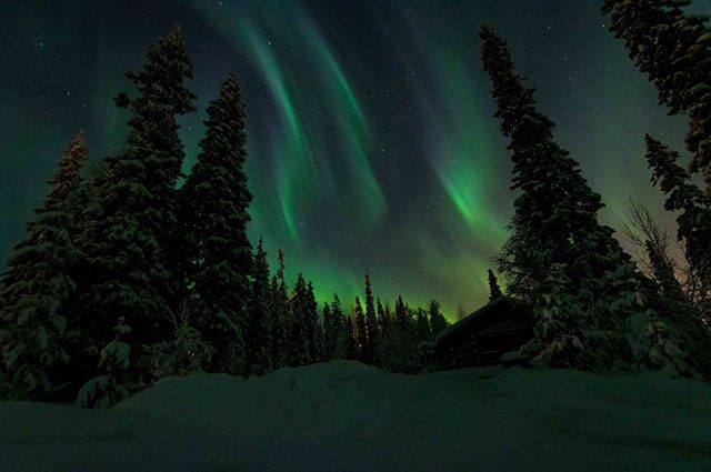 Thinking back to the great aurora in Lapland.  #kontikireisen @kontikireisen  #reisenstattferien @globetrotter_schweiz  #flyedelweiss  #visitlapland @visitlapland  #visitfinland @ourfinland  #arcticluosto @visitluosto #bodylpics #natgeo100contest #yourshotphotographer